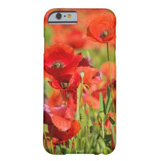 Coque Barely There iPhone 6 Plan rapproché d'un champ de pavot, France