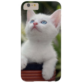 Coque Barely There iPhone 6 Plus Chaton blanc turc