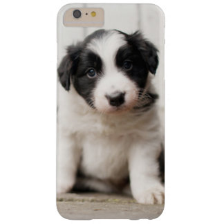 Coque Barely There iPhone 6 Plus Chiot de border collie
