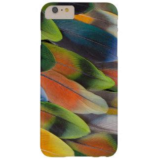 Coque Barely There iPhone 6 Plus Conception colorée de plume de perruche