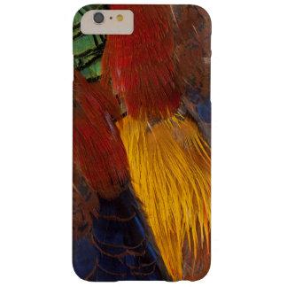 Coque Barely There iPhone 6 Plus Conception de plume de faisan d'or