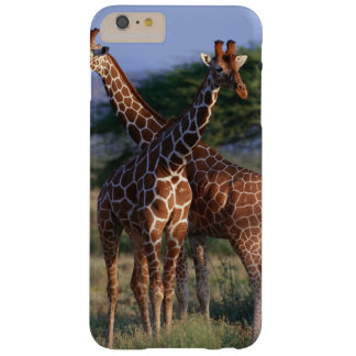 Coque Barely There iPhone 6 Plus Girafe réticulée 2