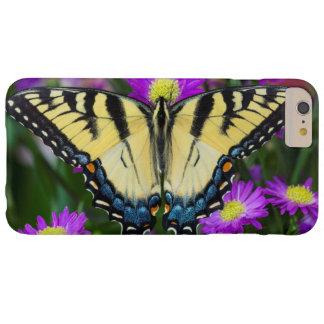 Coque Barely There iPhone 6 Plus Papillon de machaon sur la marguerite