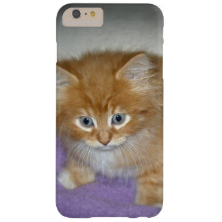 Coque Barely There iPhone 6 Plus Tache sur ce chaton