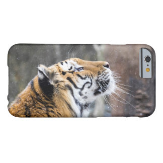 Coque Barely There iPhone 6 Tigre pensif d'hiver