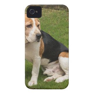 Coque Case-Mate iPhone 4 Beagle