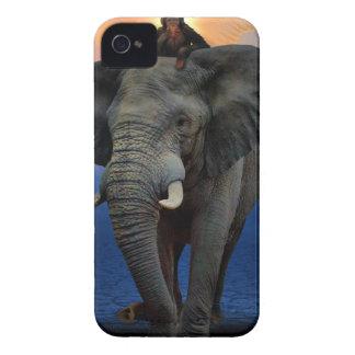 Coque Case-Mate iPhone 4 beau heureux de bébé d'éléphant de joie animale