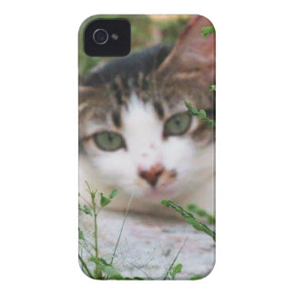Coque Case-Mate iPhone 4 Chat de Kitty