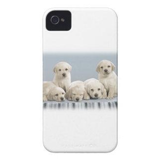Coque Case-Mate iPhone 4 Chiots timides de golden retriever