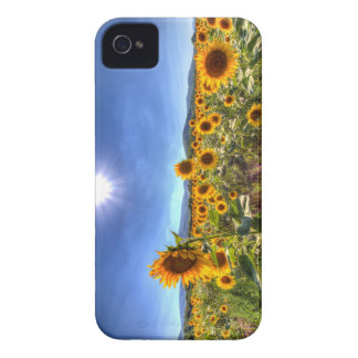 Coque Case-Mate iPhone 4 Gisements de tournesol d'été