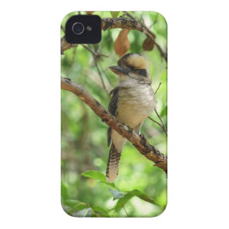 COQUE Case-Mate iPhone 4 KOOKABURRA QUEENSLAND AUSTRALIE