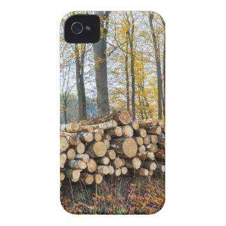 Coque Case-Mate iPhone 4 Pile des troncs d'arbre dans la chute forest.JPG