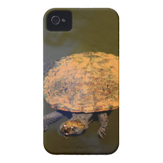 COQUE Case-Mate iPhone 4 TORTUE QUEENSLAND AUSTRALIE RURALE