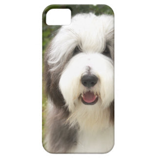 Coque Case-Mate iPhone 5 Bearded Collie Snoopy