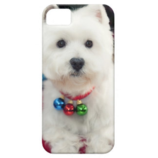 Coque Case-Mate iPhone 5 Cloche de Noël de port de chiot sur le cou