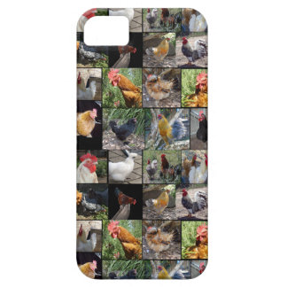 Coque Case-Mate iPhone 5 Collage de photo de poulets et de coqs,