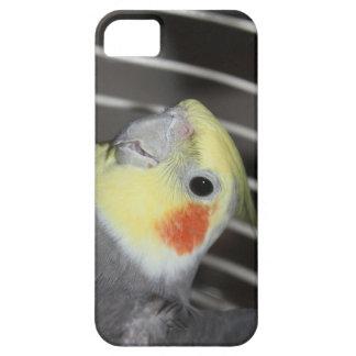 Coque Case-Mate iPhone 5 Couverture de téléphone de Cockatiel