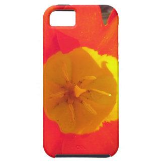 Coque Case-Mate iPhone 5 Fleur ouverte de tulipe de rouge et de jaune