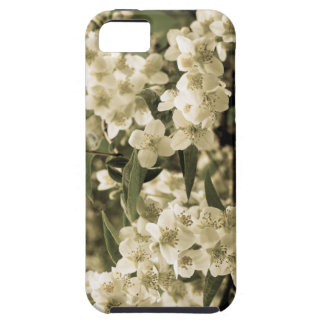 Coque Case-Mate iPhone 5 fleurs blanches aged7