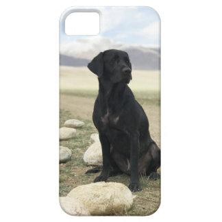 Coque Case-Mate iPhone 5 Labrador retriever noir personnalisable