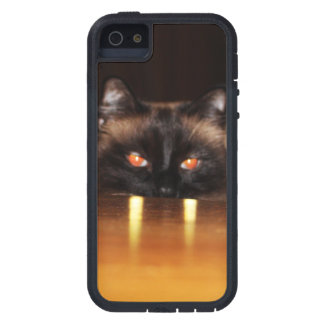 Coque Case-Mate iPhone 5 Mignon, drôle, chat de vampire
