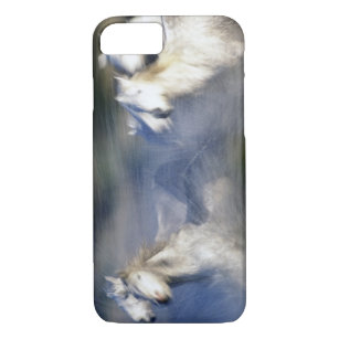 coque iphone 7 camargue