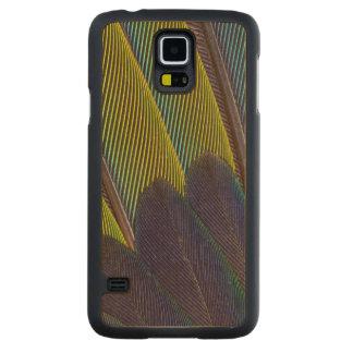Coque En Érable Galaxy S5 Case Détail de plume de Jenday Conure
