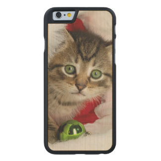 Coque En Érable iPhone 6 Case Chat de Noël - chat de chaton - chats mignons