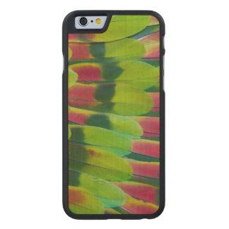 Coque En Érable iPhone 6 Case Conception de plume de vert de perroquet d'Amazone