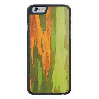 Coque En Érable iPhone 6 Case Écorce d'eucalyptus d'arc-en-ciel, Hawaï