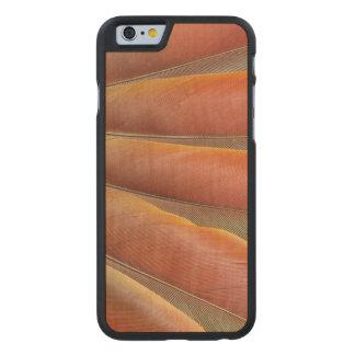 Coque En Érable iPhone 6 Case Plumes Rouge-Oranges d'ara d'écarlate