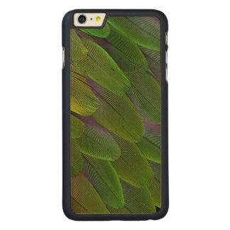 Coque En Érable iPhone 6 Plus Conception verte de plume de perroquet de caïque