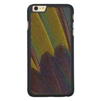 Coque En Érable iPhone 6 Plus Détail de plume de Jenday Conure