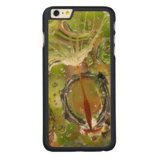 Coque En Érable iPhone 6 Plus L'eau sur la graine de pissenlit, CA