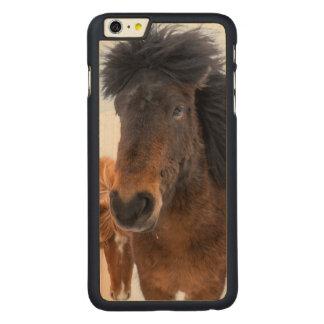 Coque En Érable iPhone 6 Plus Portrait islandais drôle de cheval