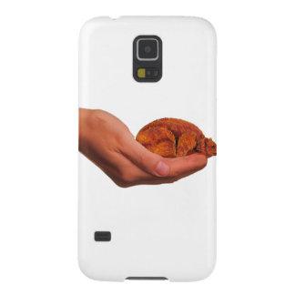 Coque Galaxy S5 Ours de câlin