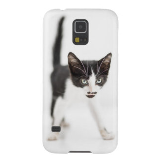 Coque Galaxy S5 Petit chat