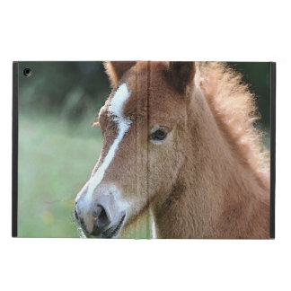 Coque iPad Air Aqua_Horse_20180101