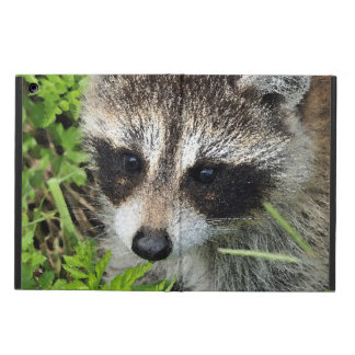 Coque iPad Air Aqua_Raccoon_20180101