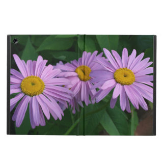 Coque iPad Air Marguerites peintes colorées par lavande