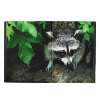 Coque iPad Air Raton laveur en nature de faune de forêt, caisse