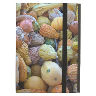 "Coque iPad Air Vous êtes ""Courge-geous"" !"