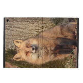 coque ipad : Fox se reposant