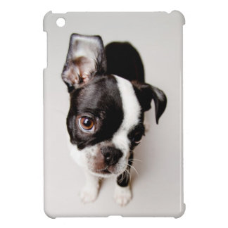 Coque iPad Mini Chiot d'Edison Boston Terrier