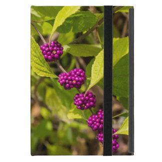 Coque iPad Mini Le Beautyberry américain