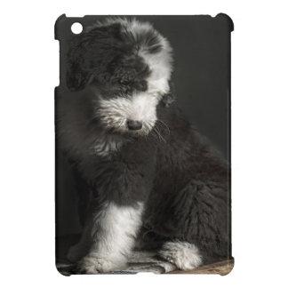 Coque iPad Mini Portrait de chiot de queue écourtée dans le studio