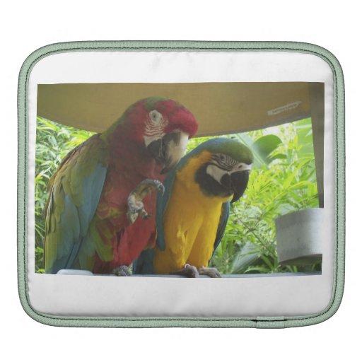 coque ipad pour des amants d'oiseau housses iPad