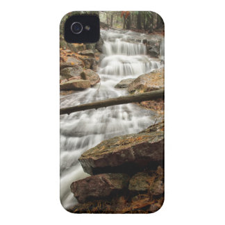 Coque iPhone 4 Cascade 4
