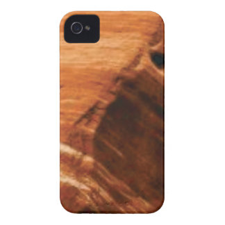 Coque iPhone 4 Case-Mate bord posé de roche