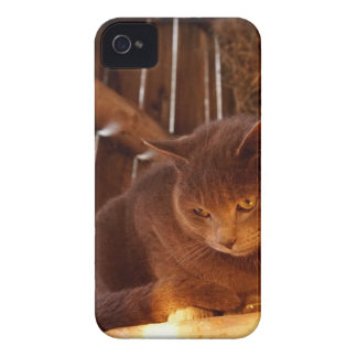 Coque iPhone 4 Case-Mate Chat de grange